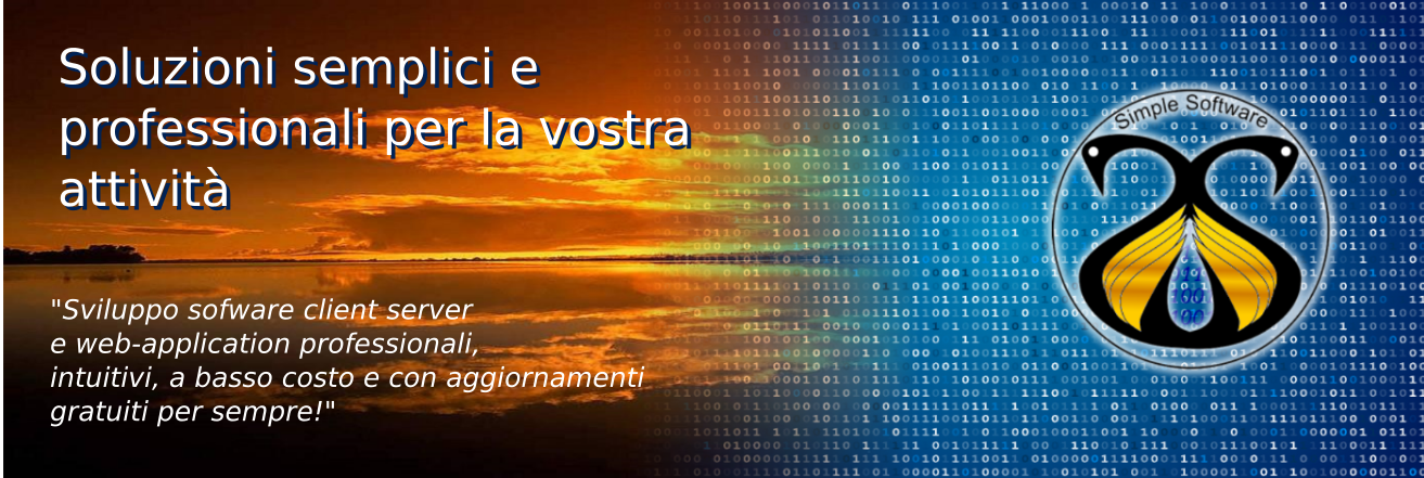 Software client-server e web application semplici e professionali
